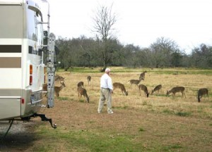 Man feeding deer 2 web