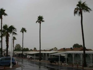 Winter Storm Apache Junction 4 web