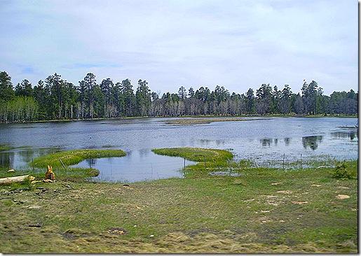 Rim Lake