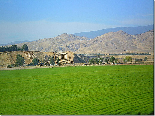 Irrigated farm fields