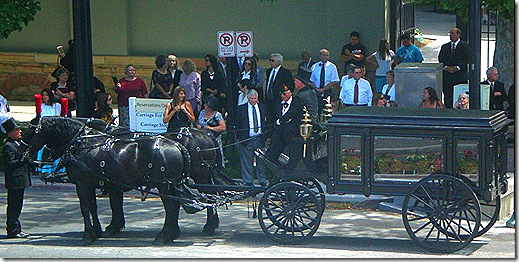 Horse drawn hearse 4