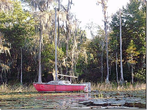 Old boat hulk 4