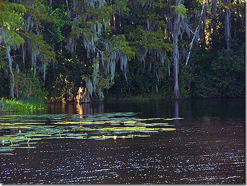 TTN Lake lagoon 2
