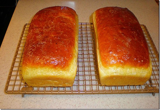 Fresh bread 2