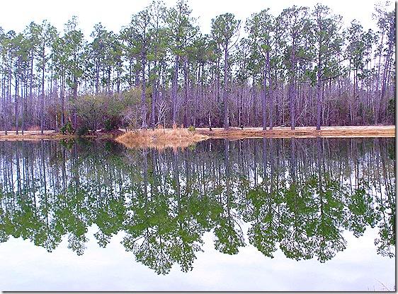 Magic River pond