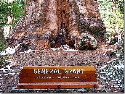 General grant base sign