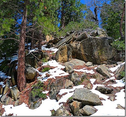 Snowy hillside