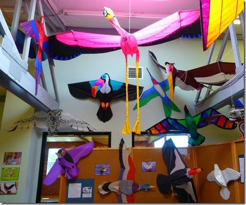 Bird kite display 2