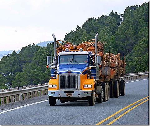 Log truck US 101