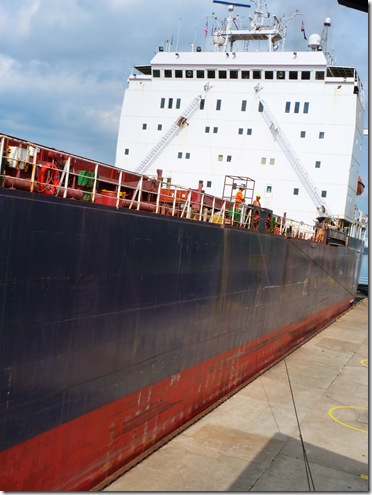 Algona Discovery tight fit