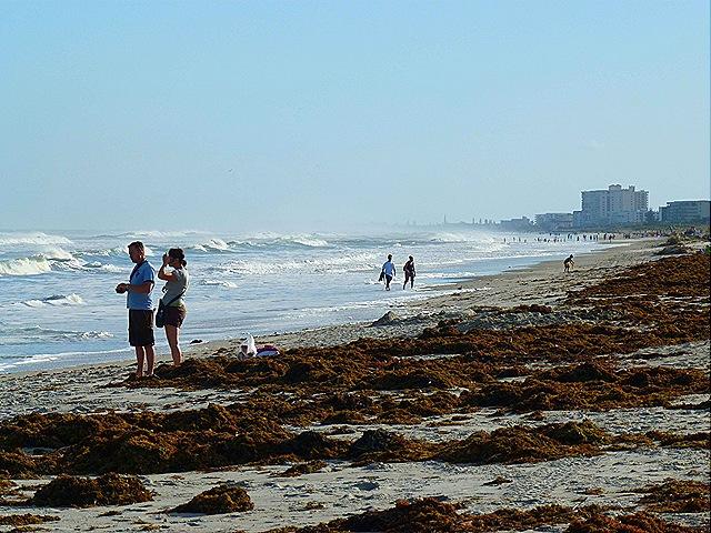 Cocoa beach strip