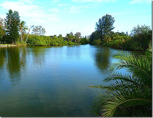 Manatee Lagoon 2