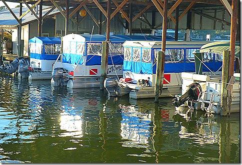 Crystal River dive boats 2