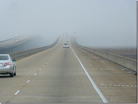 Foggy Louisiana