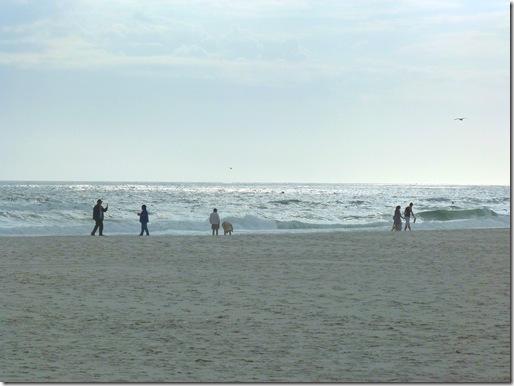 Gulf Shores beach 2