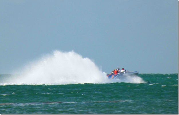 Rooster tail 3