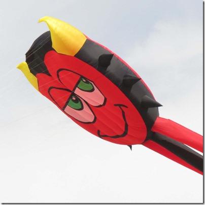Bad Nick kite