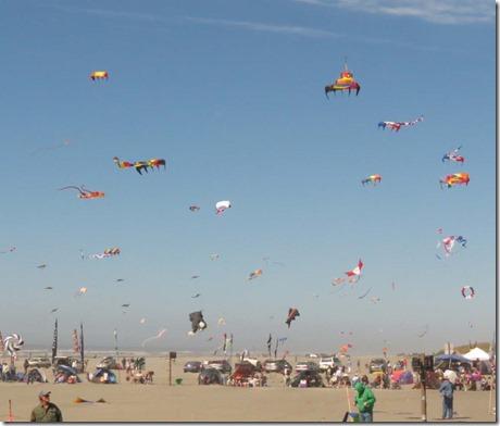 Kite festival Wednesday