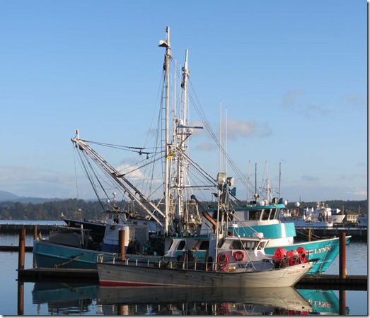 Newport marina 3