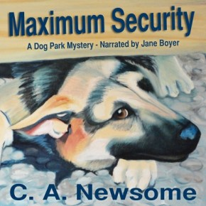 Max Cover ACX-web