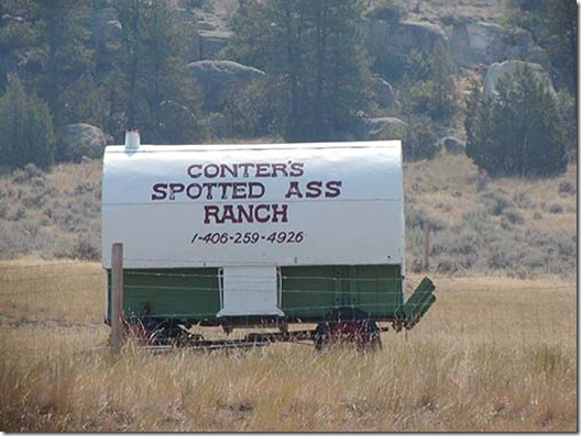 Spotted ass ranch