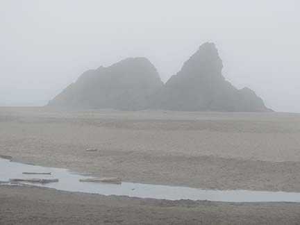 Foggy Brookings beach small