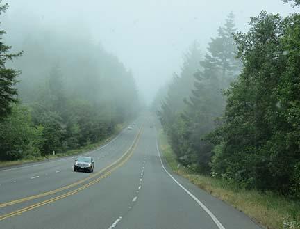Foggy US 101 small