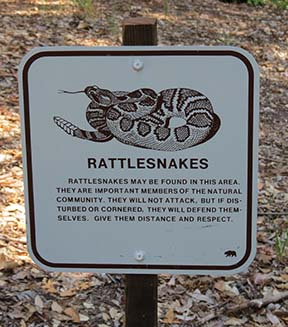 Rattlesnake sign small