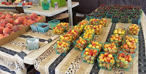 Florence fruit stand small