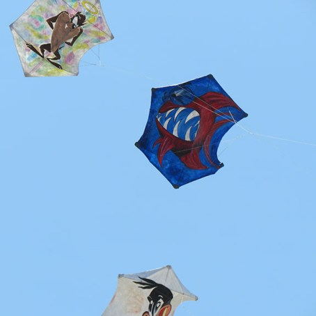 Kites fighting small