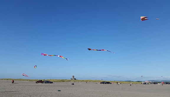 Kites in the air small