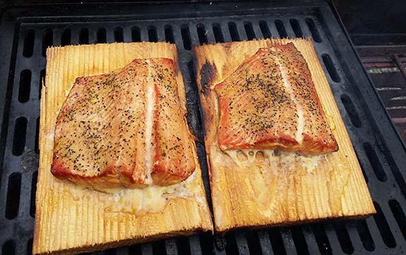 Salmon small