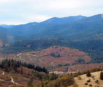 Oregon scenery 2 small