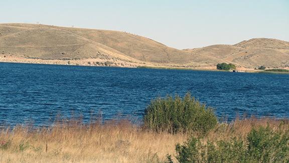 Quail Lake small