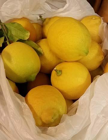 Lemons small