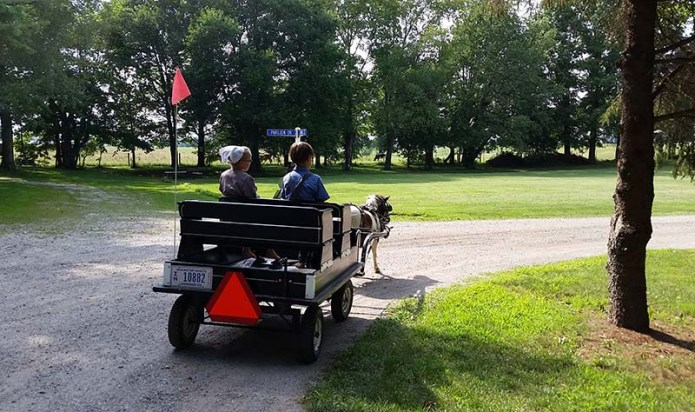 Amish kids cart