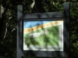 Audubon Bird Santuary Trails on Dauphin Island, AL