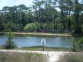 Gator Lake at St George Island SP
