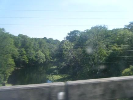 Mossy River Below