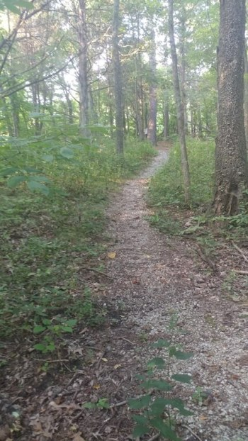 Giant City State Park interpretive trail, a great place for an educational adventure, with hiking and exploring.