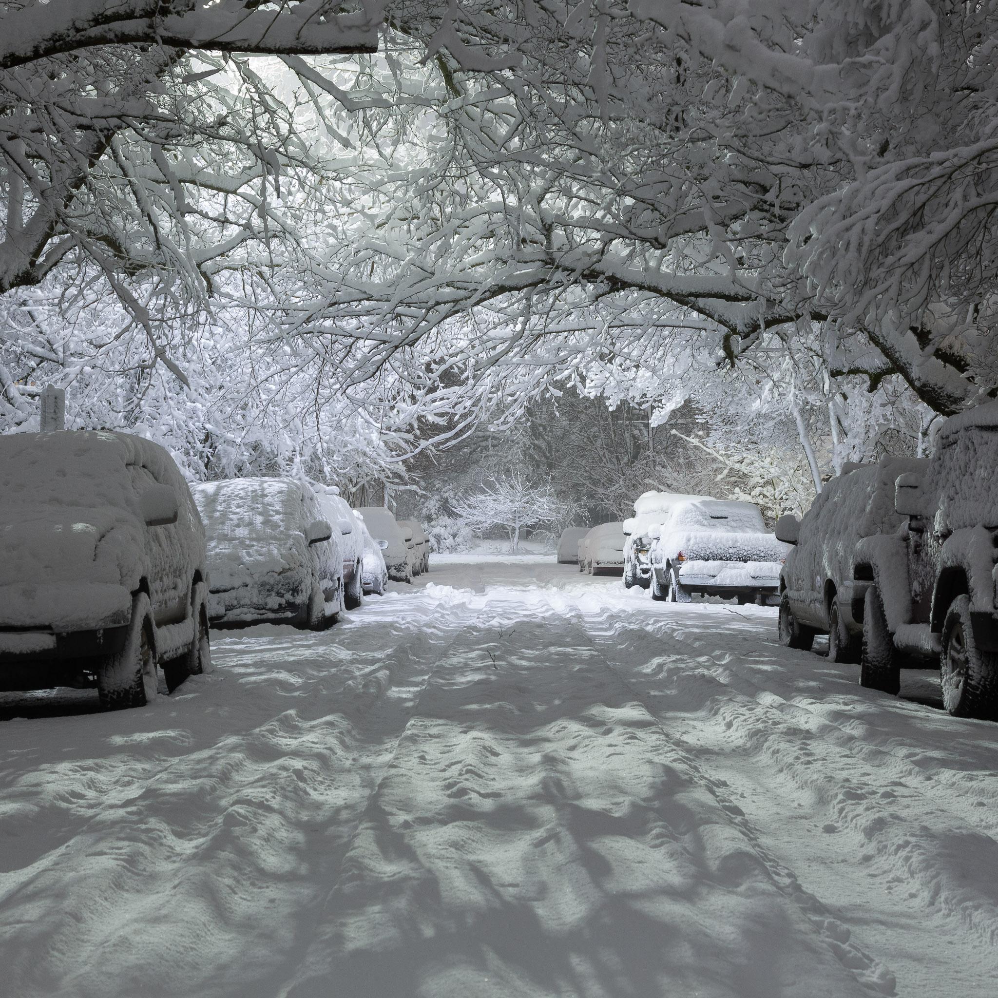 Snow night - photo by Matt Giraud