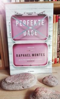 Perfekte dage af Raphael Montes