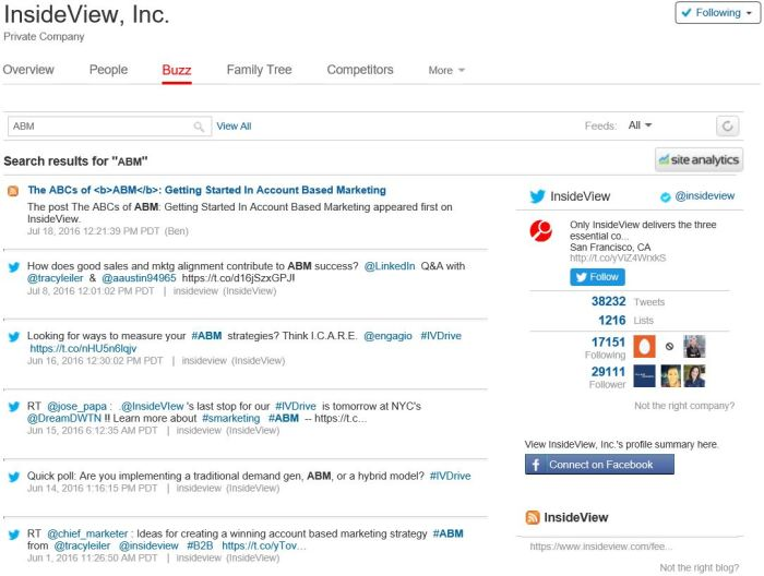 The InsideView buzz tab supports keyword searching and filtering for company blogs, Facebook, and Twitter.