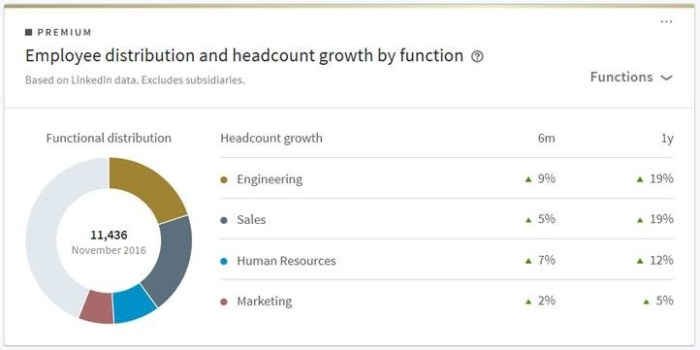 Data on employees by function from beta company profile page.