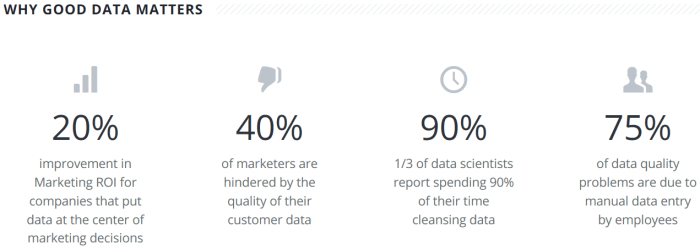 """""""Why Good Data Matters"""" Statistics from Trillium Software"""