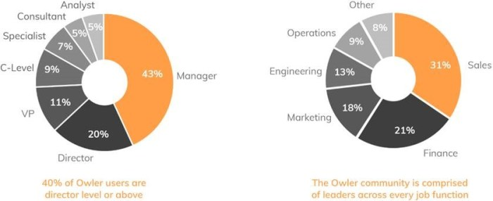 Owler user base demographics