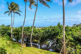 View from Suriya Resort