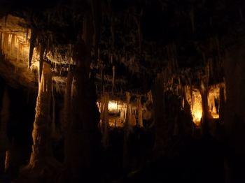 南大東島星野洞
