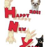 Happy NewYear 2011
