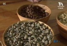 cafe-la-mesa-de-los-santos